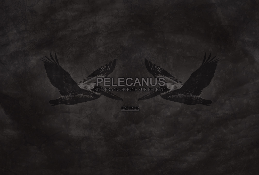 Pelecanus, site francophone sur Pelican, Hydrahead Records, Post-rock, Post-Hardcore, Sludge...